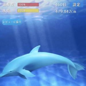 イルカの飼育 春日原 anon